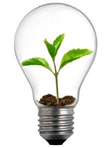 الإبـداع-Innovation